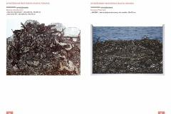 Annale-Katalog-2020_CALOSC-do-druku-strony9